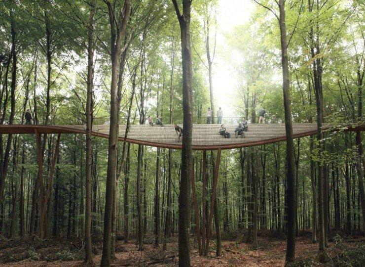 الدنمارك تكشف تجربة تري توب بين الغابات ..  فما هي؟
