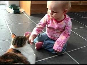 بالفيديو.. مغامرات الأطفال والقطط