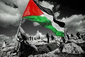 بالفيديو .. هكذا بدأت قضية فلسطين