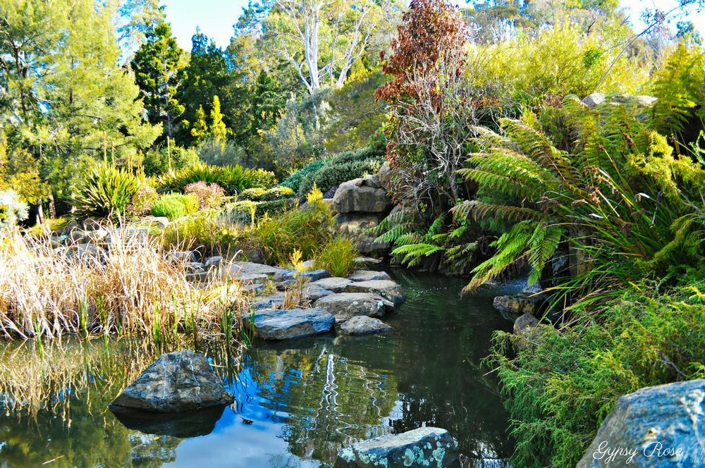 صور أجمل الحدائق النباتية في أستراليا