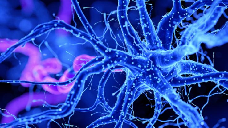 دراسة تحدد كيف يرتبط 'كورونا' بضعف الإدراك الشبيه بمرض ألزهايمر