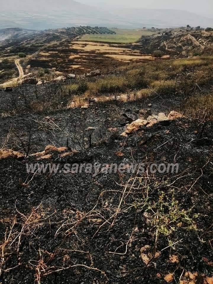 بالصور .. حريق أعشاب ومحاصيل زراعية في اربد