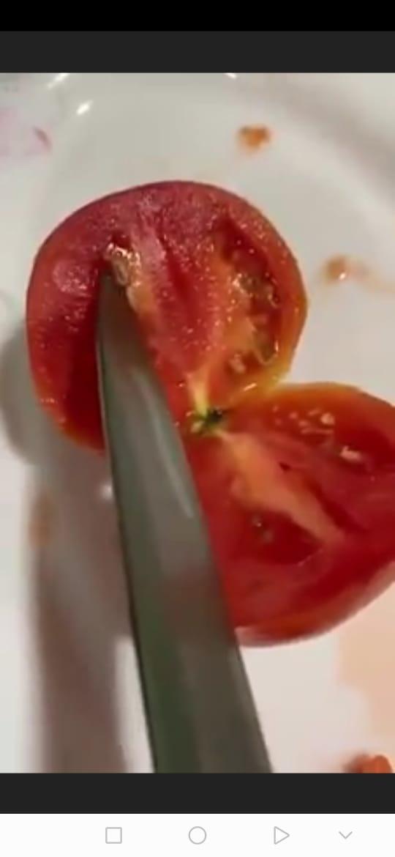 بالفيديو .. الزراعة تكشف حقيقة البندورة الفاسدة في الاسواق ..  وتؤكد ظاهرة فسيولوجية
