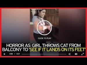 بالفيديو.. فتاة تلقي بقطة من الطابق الرابع والسبب؟