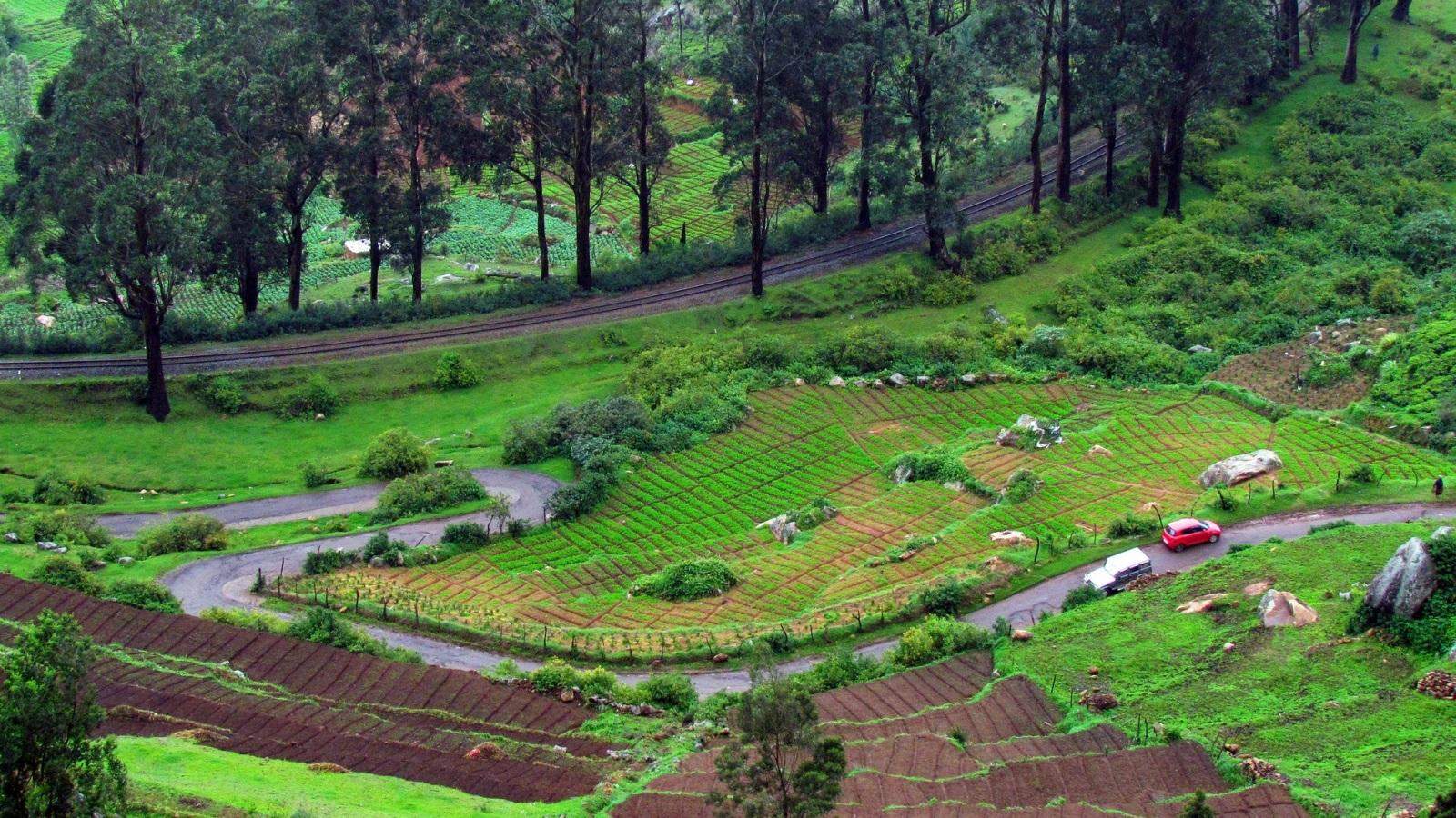 بالصور  ..  مناظر طبيعية خلابة من الهند