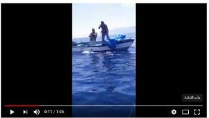 بالفيديو  ..  لحظة اصطياد سمكة قرش ضخمة في العقبة