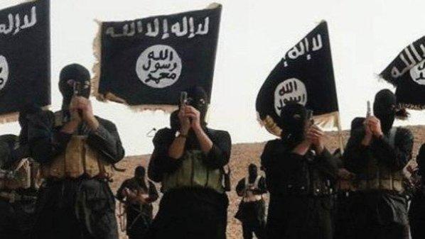 بالفيديو.. قصيدة الى داعش الفواعش