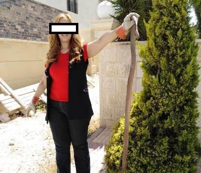 سيدة اردنية تثير مواقع التواصل الاجتماعي بشجاعتها  .. وجدت تعبان بمنزلها وهكذا كانت ردة فعلها