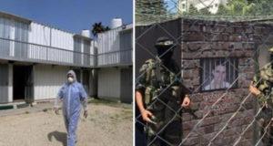 الاحتلال يصادر عشرات رؤوس الأغنام في صور باهر