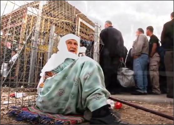 بالفيديو .. طفلة فلسطينية وين أيامك يا ستي