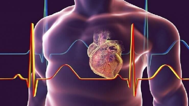 'اختراق طبي' يمكن أن يساعد في علاج قصور القلب!