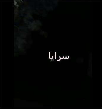 عجلون : مافيا الاحتطاب يطلقون النار  على دورية حراج ويلوذون بالفرار  .. فيديو