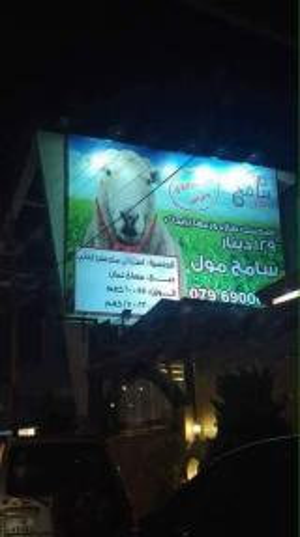 انتقادات لاذعة لسامح مول بعد نشر اعلان لخروف يسخر من الجنسيه الاردنيه