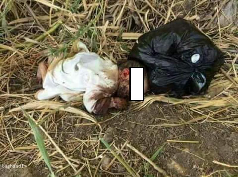 الأمن ينفي عثوره على جثة طفلة رضيعة ملقاة بمزرعة في شمال المملكة ..  صور