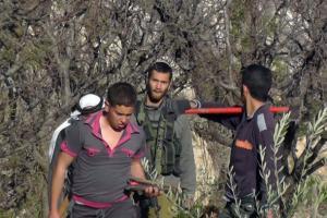 الاحتلال يمنع مزارعي شمال الخليل من جني العنب