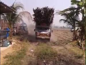 بالفيديو: لحظة انقلاب شاحنة كبيرة محملة بالأشجار