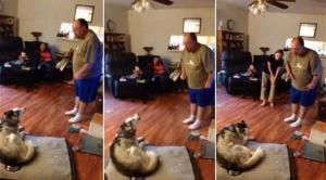 فيديو: نقاش ساخن بين رجل وكلبه