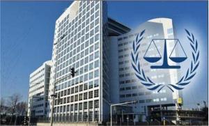 مصر تطلب ''الجنائية الدولية'' بحصانة رؤساء الدول