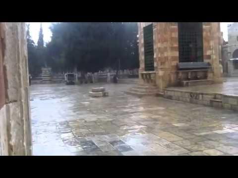 بالفيديو تساقط الامطار في المسجد الاقصى المبارك