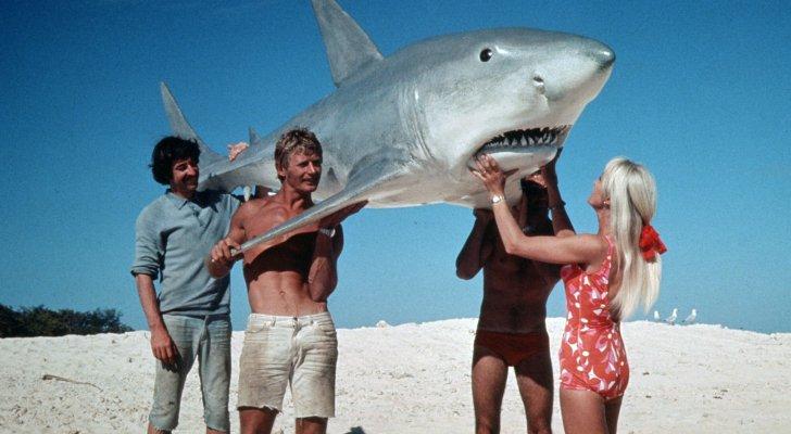تعرضت للعض 4 مرات ..  من هي المرأة الشجاعة التي تصورت مع أسماك القرش؟