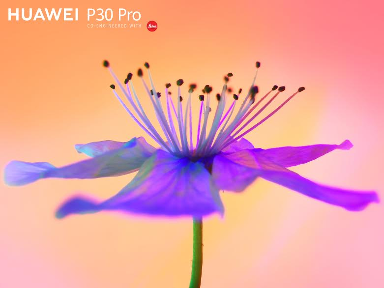 الجهاز المثالي لمحبي التصوير P30 Pro من Huawei يوفر معدات تصوير احترافي متكاملة