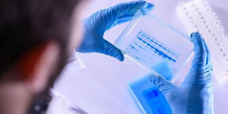 علماء يكتشفون تحورا خطيرا بكورونا: عشرات الطفرات الجينية