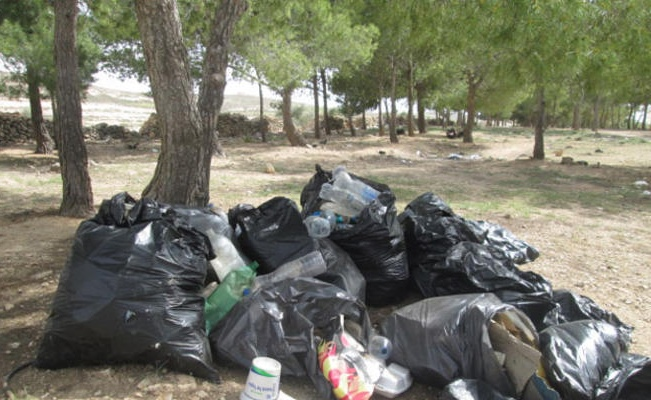 امام وزارة البيئة