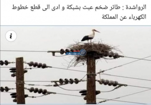 """تقرير انقطاع الكهرباء على طاولة """"لجنة الطاقة النيابية"""" اليوم"""