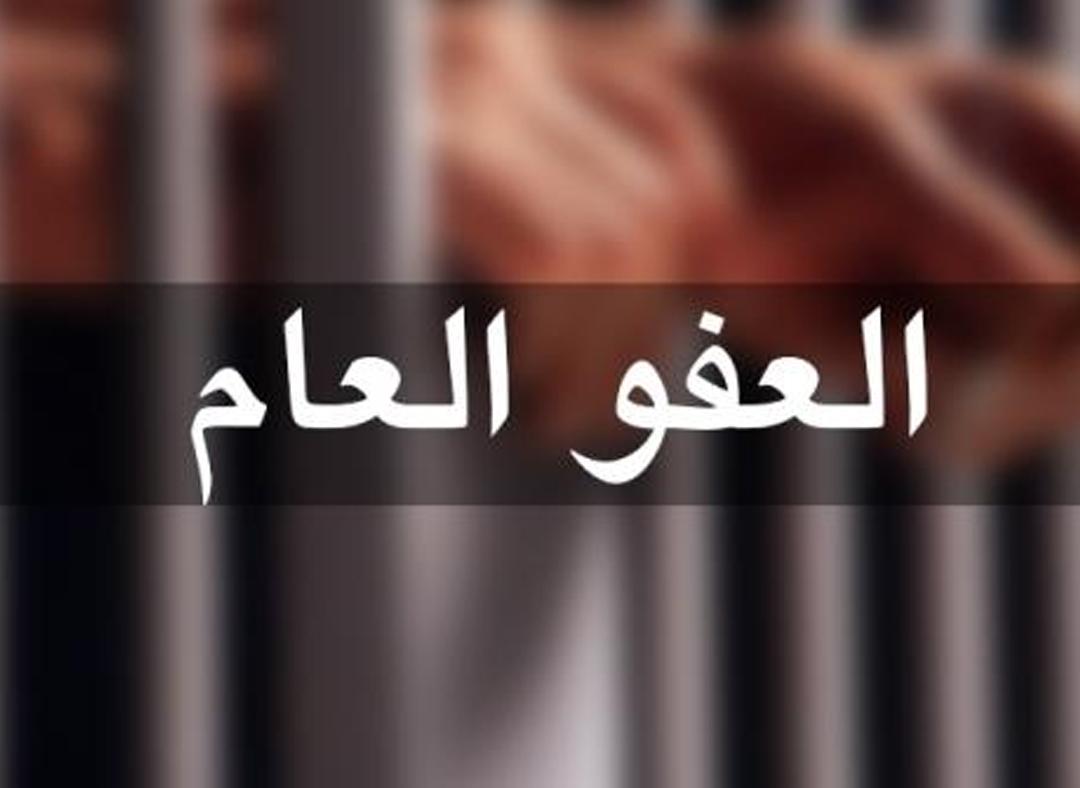 عطية للرزاز : النواب (70) نائباً رفعوا مذكرة للملك للمطالبة بإصدار عفو عام  ..  وثائق