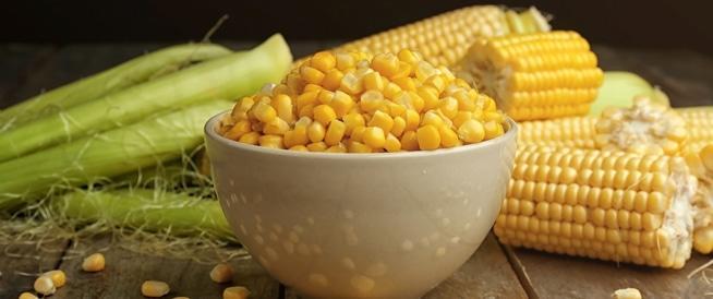 فوائد الذرة الصحية وأهميتها
