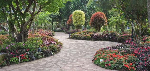 بالصور  ..  اجمل حدائق العالم