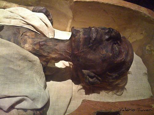 علماء يردون على وزير الإعلام السوداني: فرعون مصري و ليس سودانياً