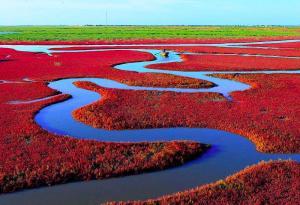 بالصور :  أغرب 5 أنهار في العالم