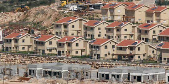 بالفيديو ..   مسؤول بـ «اتحاد المزاعين»: بدون إخلاء المستوطنات لا يُمكن إقامة دولة فلسطينية