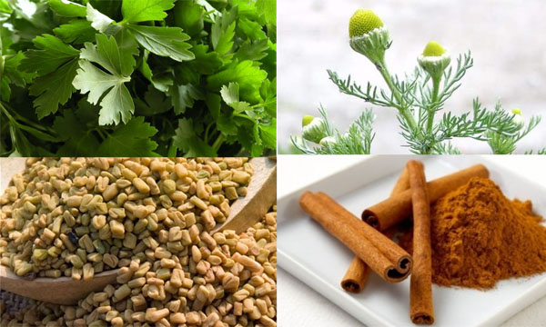 أعشاب طبيعية تحارب البكتيريا وتخفف أوجاع الدورة الشهرية