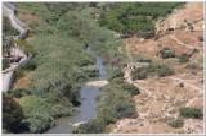 """سرايا في جولة قرب نهر اليرموك : خضراء محتلة وجرداء أردنية """" صور"""""""