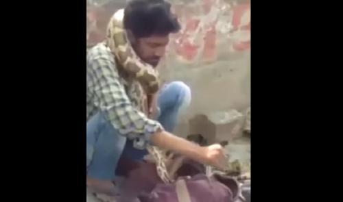 بالفيديو: شاهد ثعبان ضخم يخنق مدربه أمام الجمهور