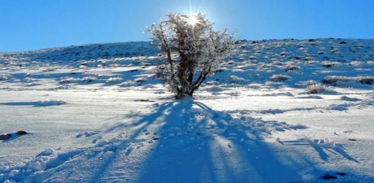 المملكة على موعد مع الثلوج مع ساعات فجر و صباح الثلاثاء  ..  تفاصيل