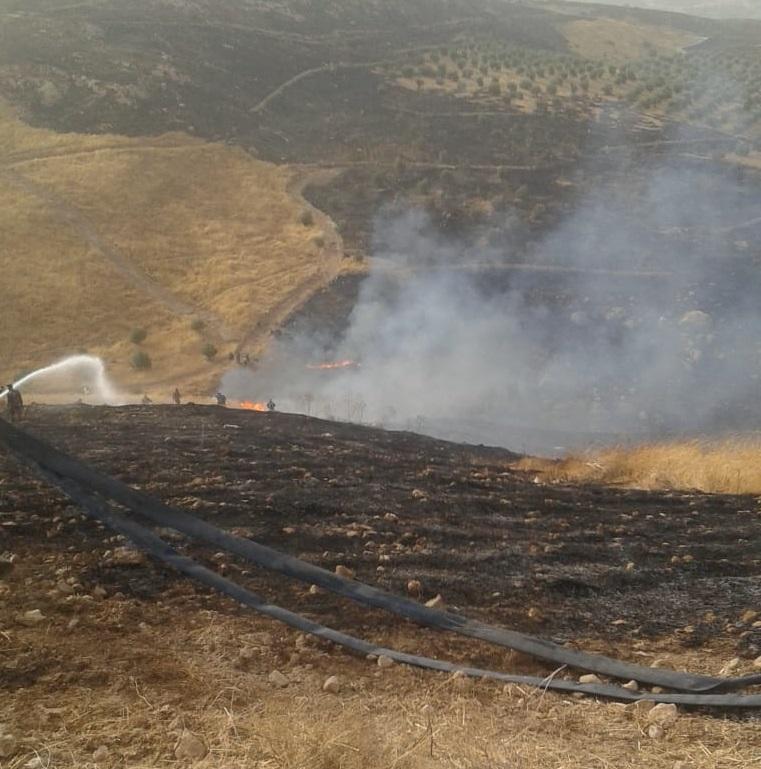 الدفاع المدني يخمد حريق أشجار حرجية في جرش