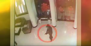 """بالفيديو.. ماذا يحدث عندما يقع """"حرامي"""" في يد النساء"""