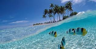بالصور.. شاهد جمال جزيرة كوبا