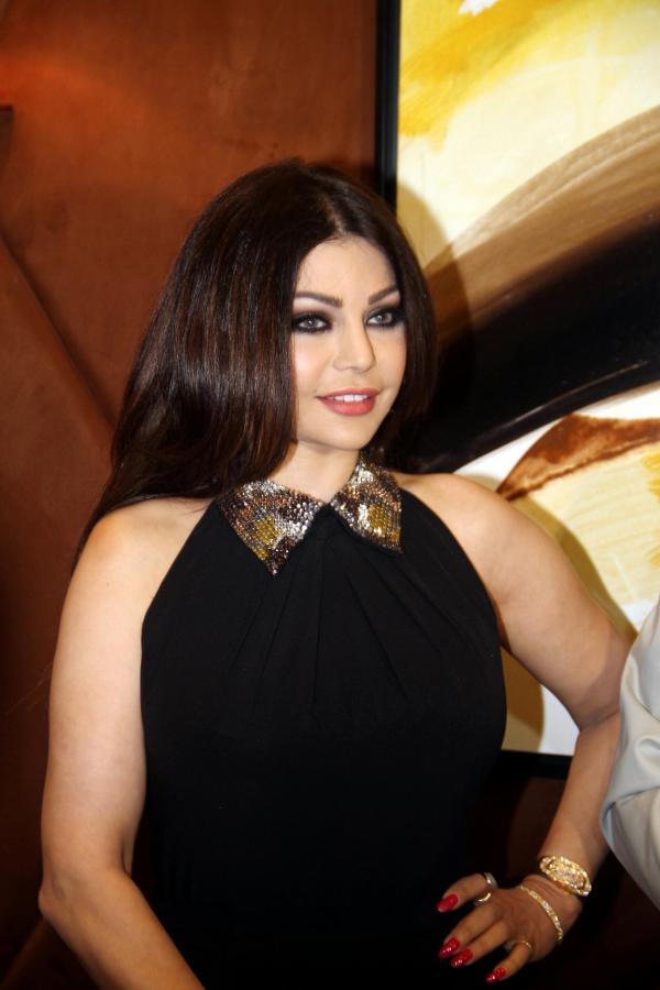 بالصور..هيفا وهبي تتألق بفستان أسود إلى جانب حاتم العراقي..للإعلان عن حفلهما
