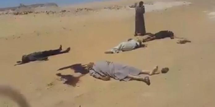 فيديو صادم للحظات الأولى بعد الهجوم على حافلة الأقباط في مصر