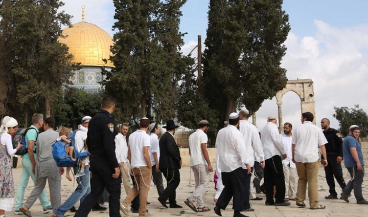 الحرم الإبراهيمي ينتهك مجددا مع عيد الغفران
