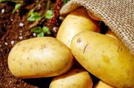 تفسير رؤية البطاطا في منام