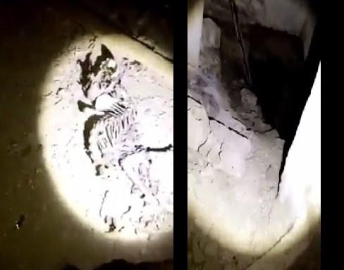 بالفيديو  ..  شاب اردني يوثق لحظة دخول مغارة مليئة بالعظام البشرية قام بنبشها الباحثون عن الذهب و الدفائن