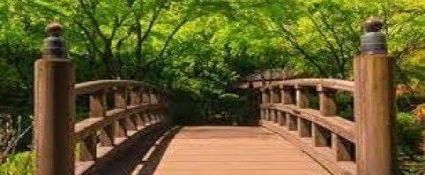 تفسير رؤية الجسر في المنام