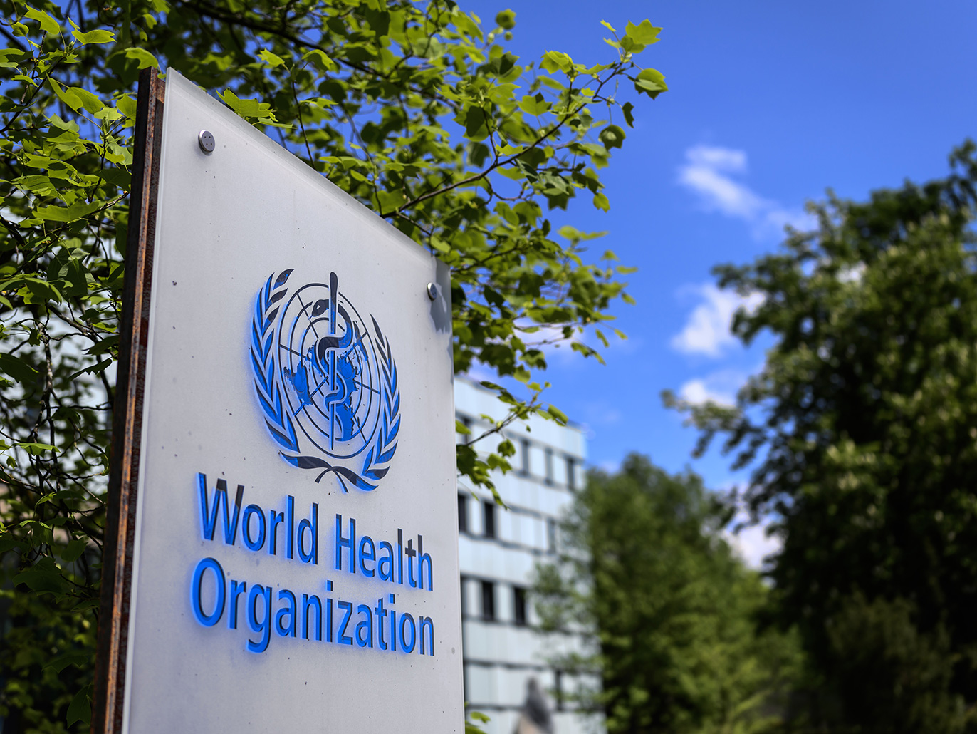 الصحة العالمية: 5ر82% نسبة حالات الشفاء من كورونا شرقي المتوسط
