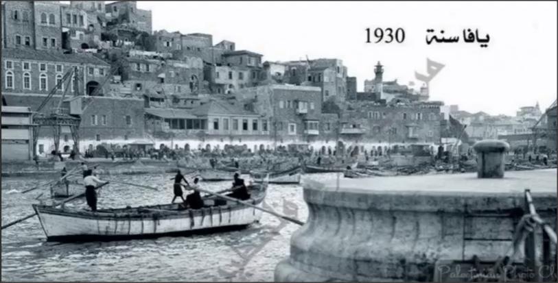 بالفيديو .. فلسطين قديما قبل الأحتلال