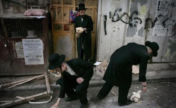 """بالصور: شاهد """"يُطهر"""" اليهودي نفسه image.php?token=75f5e3a81d1785b9edd0be716715db5e&size="""